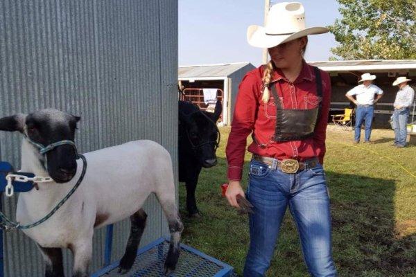 Hope & Blazer her 4H sheep