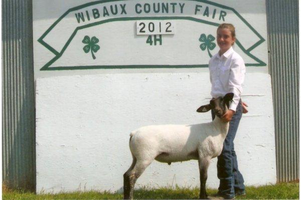Hope & her blue ribbon market lamb - Ben