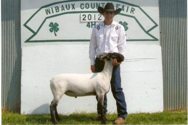 Bob & Grasswhacker - 2012 Grand Champion market lamb