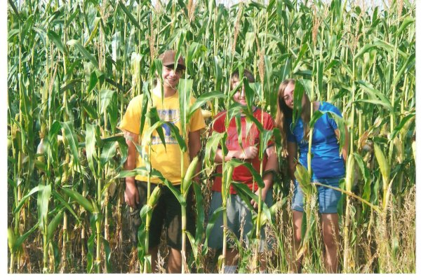 8-10' dryland corn - summer 2013