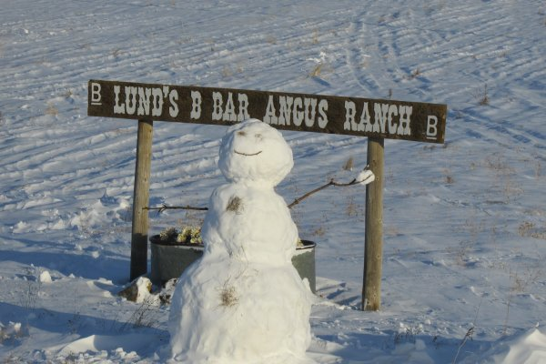 A snowman throwing a snowball.  Welcome to Lunds B Bar Angus Ranch
