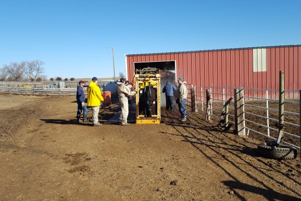 Pre-bull sale cleaning crew.